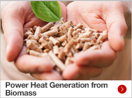 Power Heat Generation from Biomass